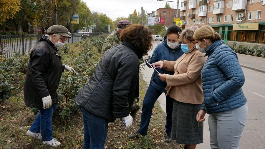 В Таганроге на улице Дзержинского высажено 500 кустов роз