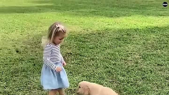 Вот почему каждый ребенок должен расти с собакой