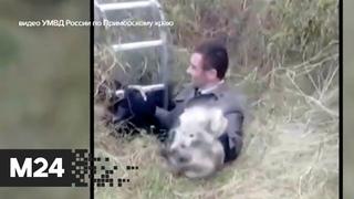 В Приморском крае полицейские спасли двух диких животных из колодца - Москва 24
