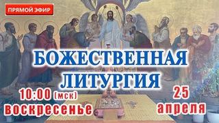 Прямая трансляция: Божественная литургия. Вербное воскресенье 25 апреля 2021
