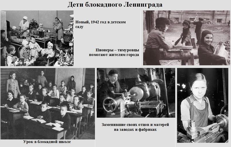 Блокада Ленинграда: история 827 дней в осаде., изображение №9