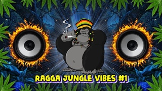 2021 Ragga Jungle Drum & Bass Vibes #1 (Reggae DnB Mix)