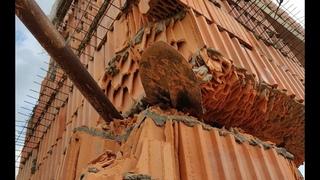 Развалины недостроенного дома, строили большой и дорогой дом, но что-то пошло не так, развалины