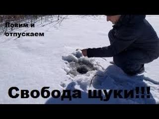 ЛОВЛЯ ЩУКИ на ЖЕРЛИЦЫ по ПО ПОСЛЕДНЕМУ ЛЬДУ. Зимняя рыбалка на жерлицы. ЛОВИМ И ОТПУСКАЕМ!!!!!!!
