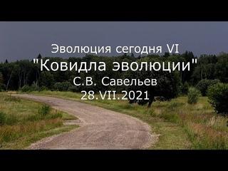 С.В. Савельев -  - Ковидла эволюции