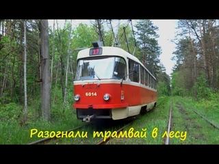 Разогнали старенький трамвай Tatra T3SU через лес Киев - Пуща Водица Zeven LAZ и Екатерина Савилова