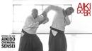 Defenda-se com Aikido · Dai Sankyo