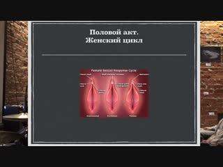 Женский оргазм. Анатомия и физиология. Дмитрий Лубнин