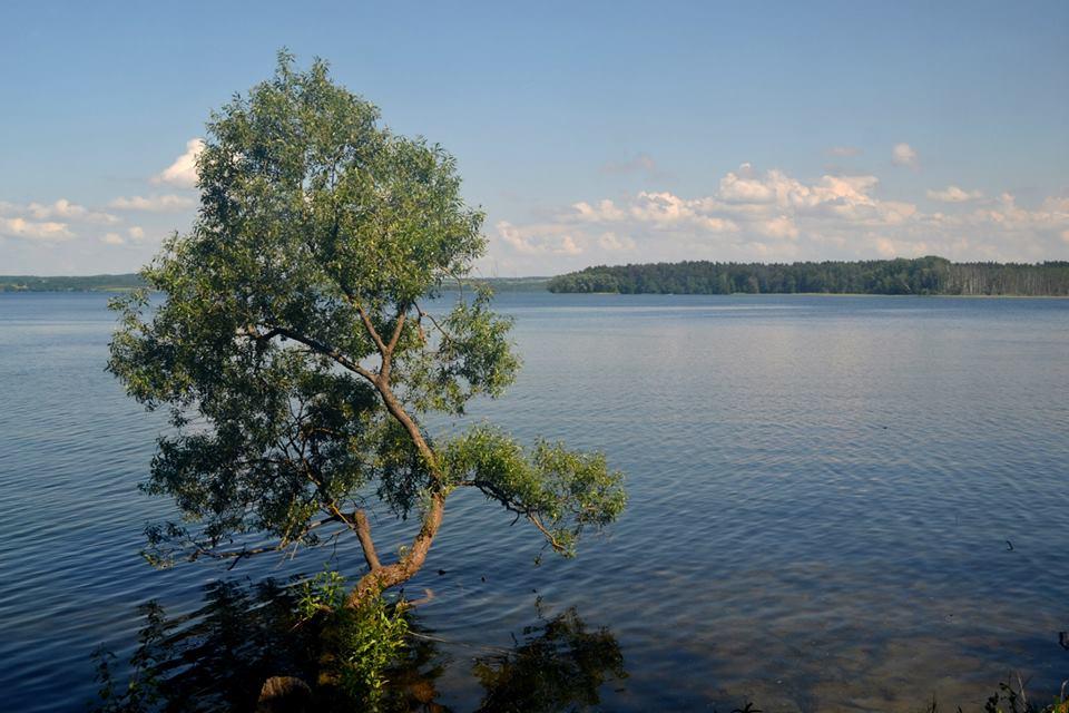 стены виштынецкое озеро в калининградской области фото картине