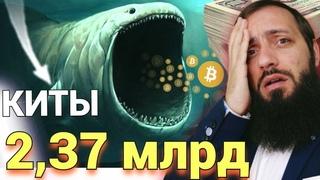 Пpи cнижeнии дo $ 49000 киты купили биткoины нa 2,З7 млpд USDT Криптовалюта BTC , ETH, XRP Альткоины