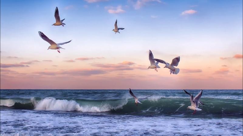 Beautiful sunrises and sunsets photos. Kрасивые закаты и рассветы фото на море в период карантина