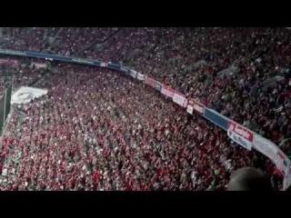 FC Bayern vs Wfl Wolfsburg Bayern fans