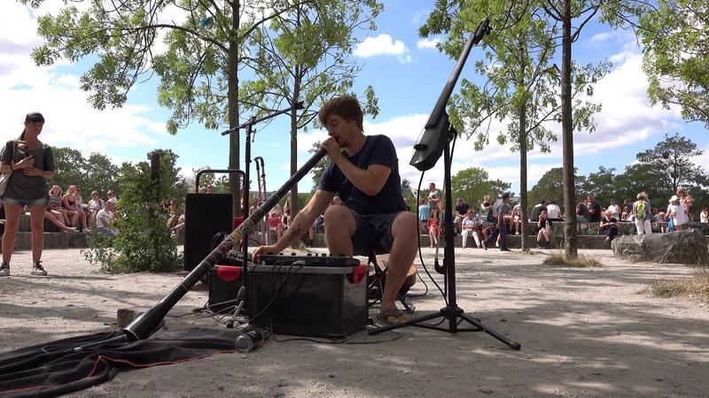 Reinhardt Buhr Pt6 / Multi instrumentalist Loop artist / Boss-RC505 / Shofar / E-Cello