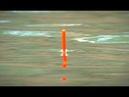 Бешеный клёв карася на УЛЬТРА ЛЕГКУЮ УДОЧКУ Поплавочная ловля карася Поклёвки крупным планом