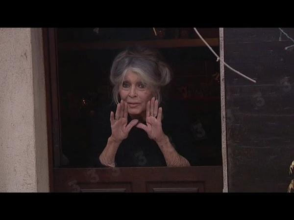 EXCLU Brigitte Bardot nous a exceptionnellement ouvert les portes de sa maison dans le Var