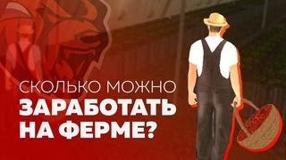 СКОЛЬКО МОЖНО ЗАРАБОТАТЬ НА ФЕРМЕ BLACK RUSSIA CRMP