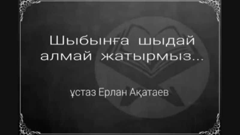 Шыбынға шыдай алмай жатырмыз Ұстаз Ерлан Ақатаев mp4