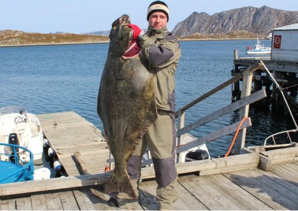 Трофейная рыбалка Норвегия