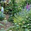 Питомник растений Зелёный Рай