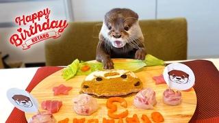 Happy birthday kotaro, Now where is my treat 😂