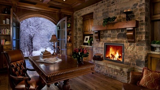 Pafuli - It's snowing outside, the fireplace and dancing fire in your library will make you happy