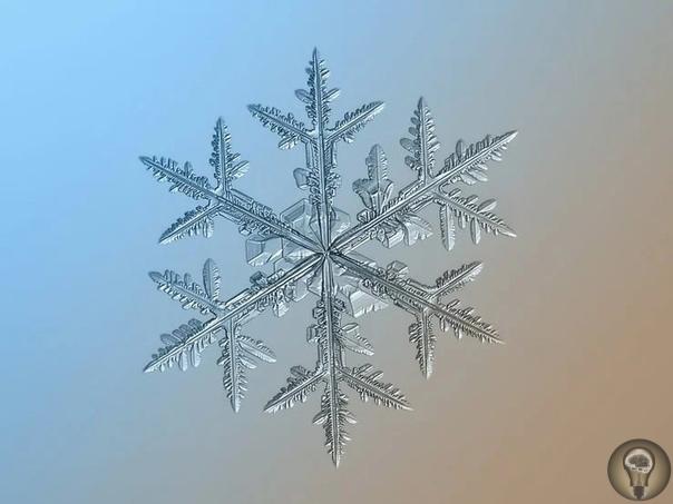 Как выглядят снежинки на макрофотографии: уникальная красота Работы московского фотографа Алексея Клятова стали известны широкой публике еще в 2013 году. Используя недорогое оборудование для