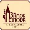Замок Попова г Васильевка