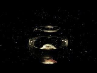 OOMPH! - Zwei Schritte vor (OFFICIAL MUSIC VIDEO)