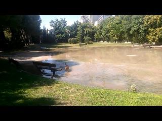 Chupito at park