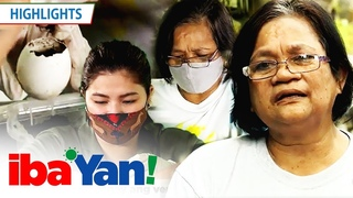 Nanay Vilma teaches Angel Locsin some plantita skills | Iba 'Yan