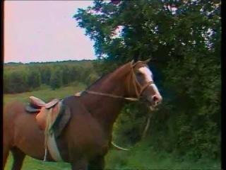 Передача БУДИЛЬНИК (1984) Три медведя.