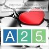 Интернет-агентство А25