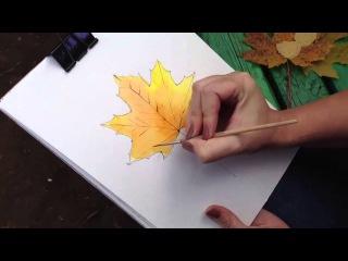 Как правильно нарисовать кленовый лист