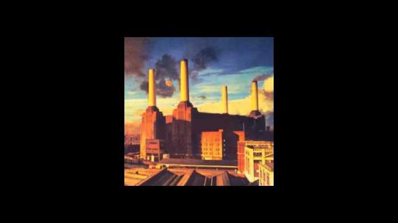 Pink Floyd - Dogs (Alameda Coliseum, Oakland, California, 09.05.1977)