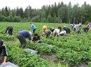 Фотоальбом Юлии Финляндия