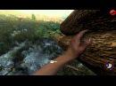 Выживание в The Forest 2 с Диманом и Маразиком