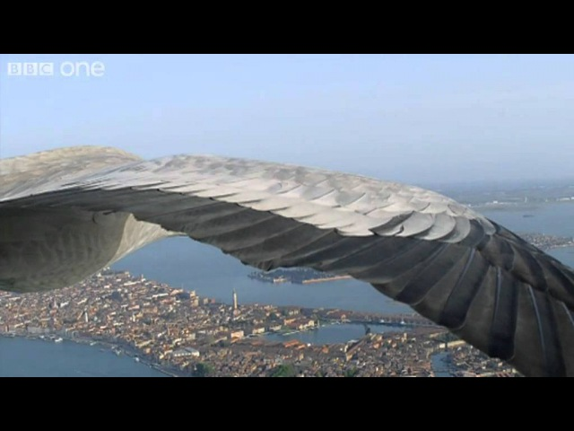 Common Cranes Fly Over Venice (Narrated by David Tennant) - Earthflight - BBC One