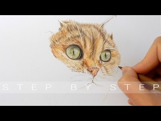 Draw With Me | How to draw realistic cat fur and nose with colored pencils step by step | Emmy Kalia
