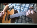 Mauro-Bona Sera, Seniorina guitar cover