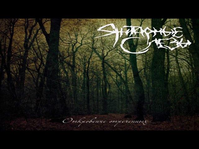 Amber Tears Revelation Of Renounced re release Full Album