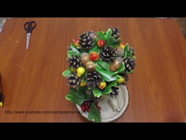 Топиарий из шишек и желудей Topiary of cones and acorns