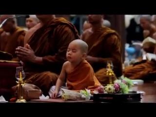 Маленький буддийский монах.