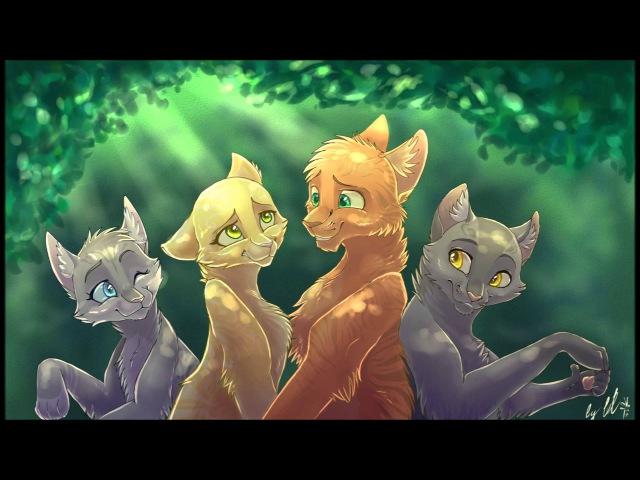Warrior Cats Firestar PMV 7 Years Old READ BELOW