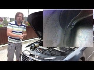 Исследование ЦПГ: VW Passat B6,  (BVY)