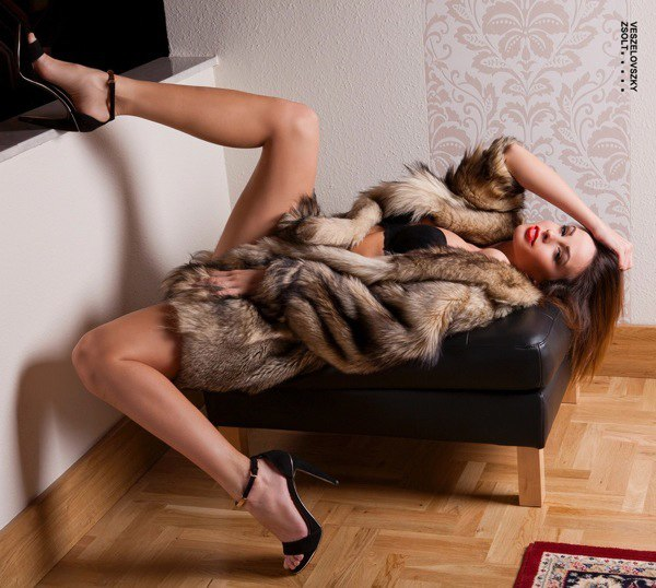 Fur Shemale Porn Photo