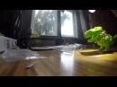 Самобеглый динозавр на солнечной батарее - обучающий конструктор с aliexpress