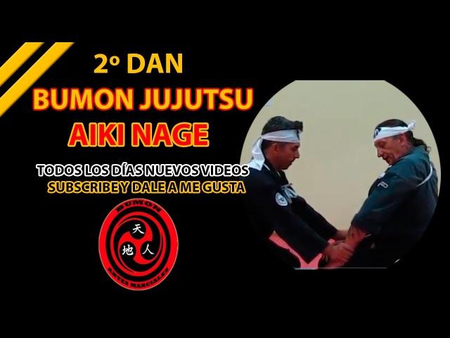 2º Dan aikijutsu Aiki Nage Daito Ryu Hakko Ryu Bumon Jujutsu