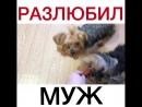 VID-20180115-WA0025.mp4