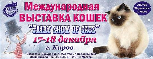 Клуб кошек в москве фауна ночной клуб в юао