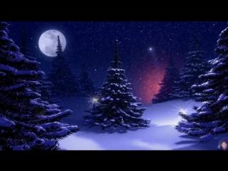Сергей Чекалин / Волшебная музыка зимы - Падал снег